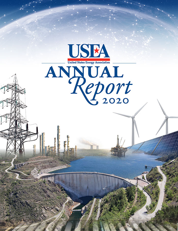 USEA 2020 Annual Report Cover