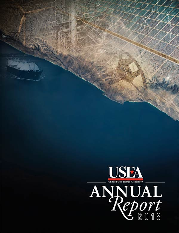 USEA 2018 Annual Report Cover